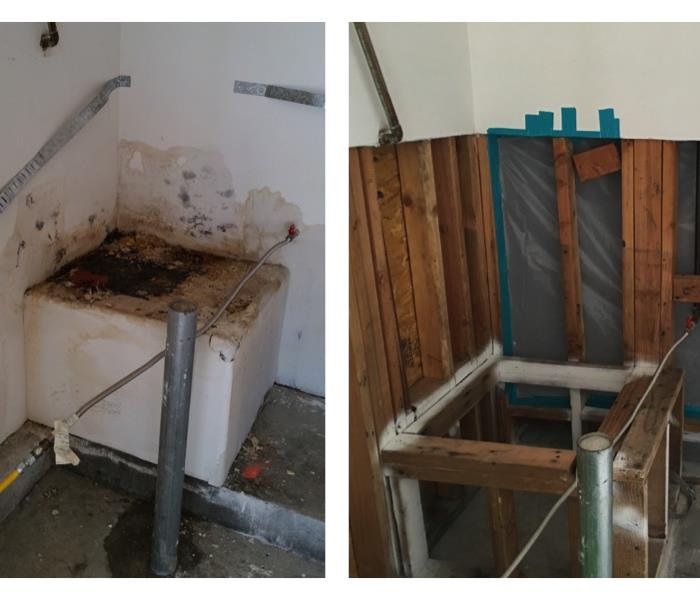 Before and After Mold Damage