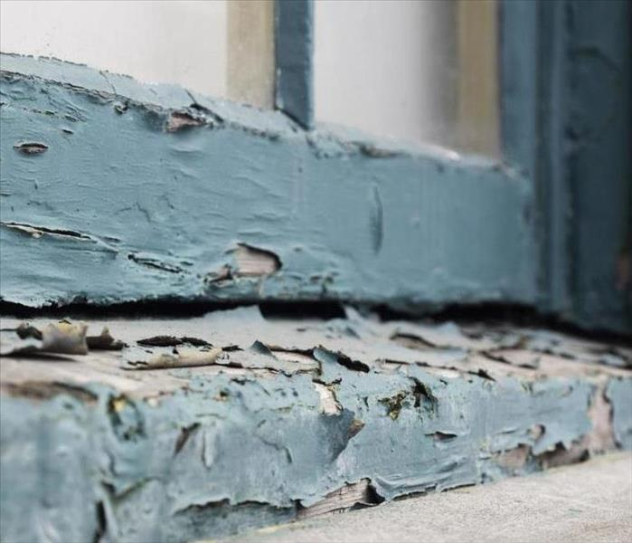 Mold Remediation Lead Paint
