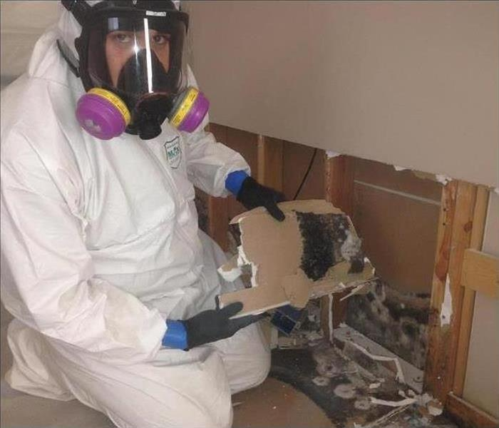 Worker dressed in PPE removing mold.