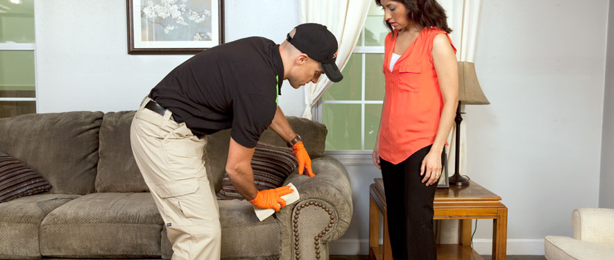 Vista, CA carpet upholstery cleaning