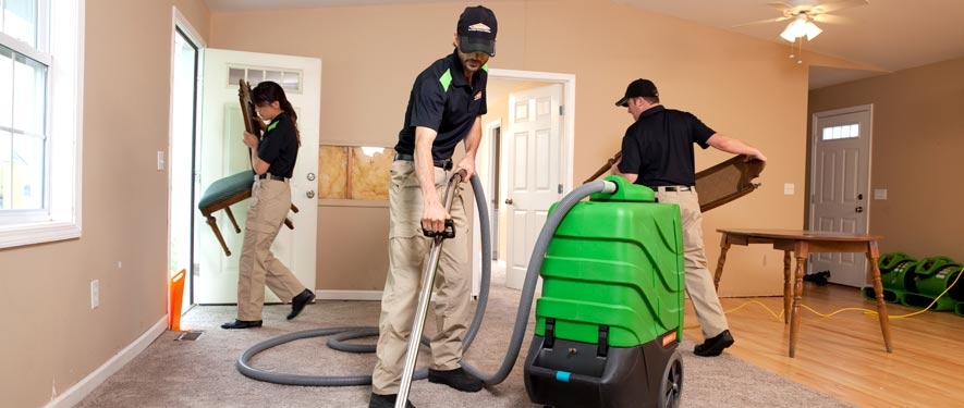 Vista, CA cleaning services